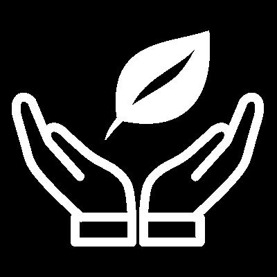 Environmental Transformation 12